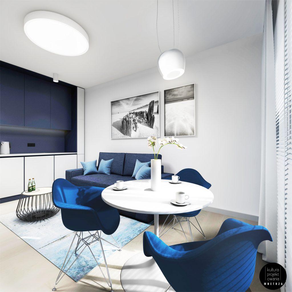apartament-duzy-3RT-1024x1024